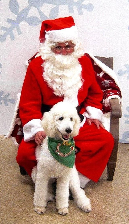Vivian's Sugar Dar Popcorn and Santa
