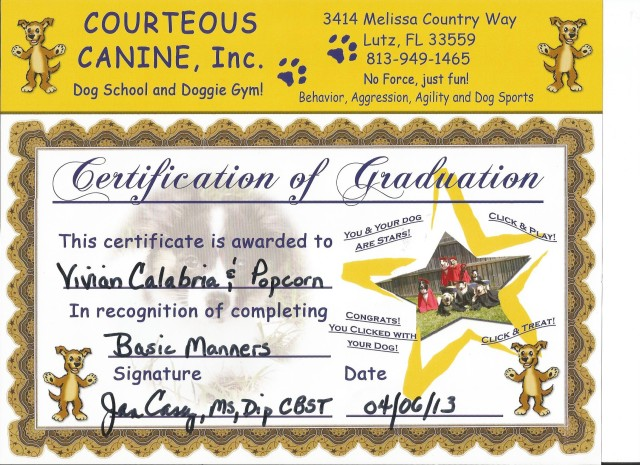 Popcorn's Basic Manners Certificate II